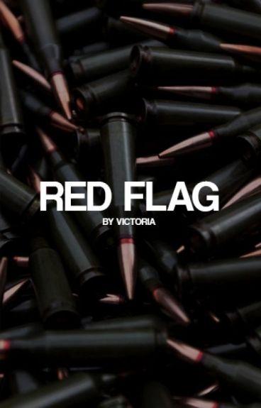 RED FLAG   Suicide Squad