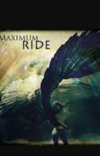 Maximum Ride: A New Life by 28Dragonqueen