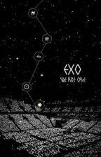 [EXO-L] NHẬT KÝ FANGIRL by Real_SeMin