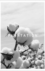 Plantation by jorn1455