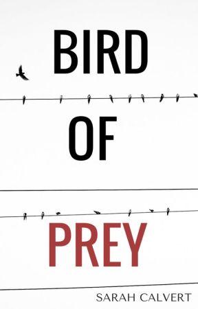 Bird Of Prey  by hotcocoabliss