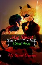 My Sweet Chat Noir  by MySweetieDreams
