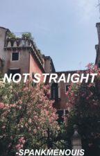 not straight ; nouis (book 2)  by -spankmenouis