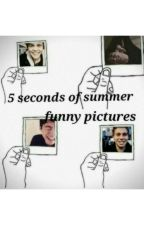 5SOS Funny Pictures by littleprincess_xox