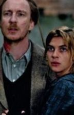 Tonks and Lupin- Baby It's Cold Outside by allElokK