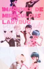 Imagenes de miraculous ladybug !  by lilyhaddock