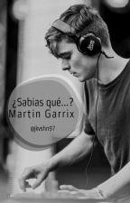 ¿Sabias Qué... Martin Garrix?  by Durnatz7