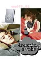 Dreaming Awake (SeBaek/ HunBaek) by Wolf7_88