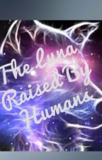 The Luna Raised By Humans by Alyahamgirl