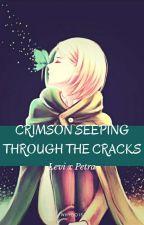 Crimson Seeping Through The Cracks ( Levi x Petra ) by whydo15