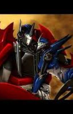 What? Arcee sex