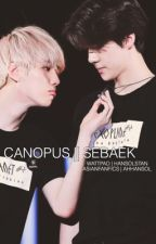 CANOPUS | SEBAEK (SEQUEL TO SIRIUS) by hansolstan