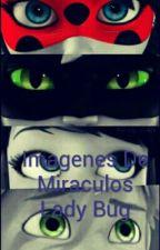 Imagenes De Miraculos Lady Bug by coromoto_1226