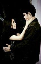 Mr. Ceo&Mrs. Doctor by Qymrera