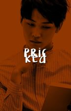 pricked. [ijb + cyj] by godjaebum
