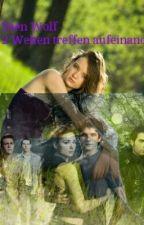 Teen Wolf - 2 Welten treffen aufeinander by refinnej0409
