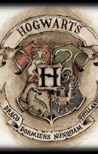 Hogwarts Gründer auf Zeitreise by xxxMaryNxxx