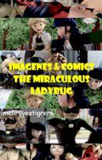 Imagenes & comics de Miracolous Ladybug by melireyestigrero