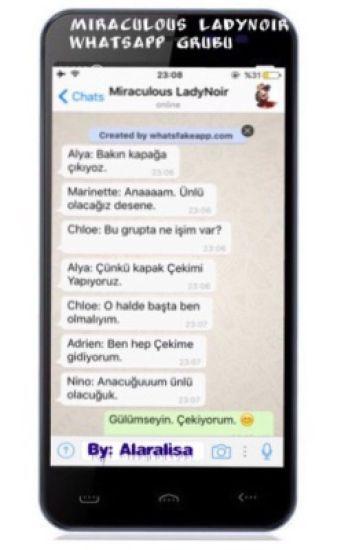 Miraculous LadyNoir Whatsapp Grubu
