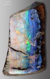 opals by girl--garden