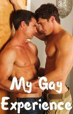 My Gay Experience (boyxboy) (boyxman) by randomauthor777