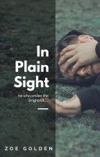 In Plain Sight [mxb] by revolution_starter