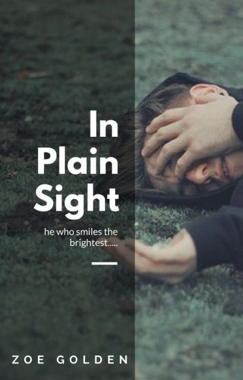 In Plain Sight [mxb]