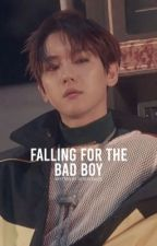 Falling for the Bad Boy || Baekhyun x You by sophiaychanxu
