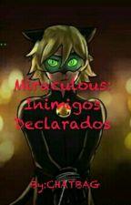 Miraculous: Inimigos Declarados by chatbag