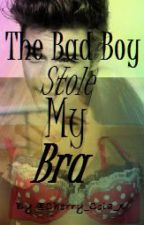 The Bad Boy Stole My Bra One Shot  by Alec_Darkwood