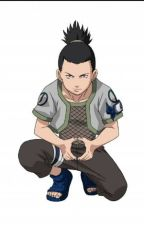 Shikamaru X Reader by Garralover55
