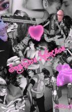 Segundas Intenções 2 (Romance Gay) by MSNicastro