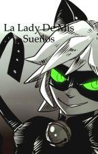 La lady de mis sueños (chat noir y tu) [Novela Interactiva] by fran1116n