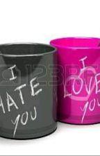 I Hate You, I love You by QoniNormayanti