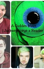 IION HOLDIIJacksepticeye x Reader II A Sudden Meet by CatNabberDoes