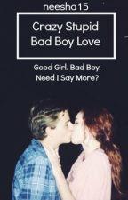 Crazy Stupid Bad Boy Love by flashbacx