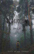 Destrucción by Dri371