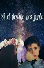 Si El Destino Nos Junto by twinner-cas26