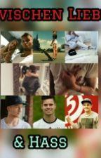 Zwischen Liebe & Hass  by mrspulisic22
