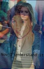 Now I understand it (Fortsetzung / Louis Tomlinson ff) by LizzyCarrot