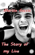 Martin Garrix - The Story of my live by Namenslosxlx