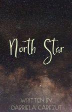 North Star by gabycabezut