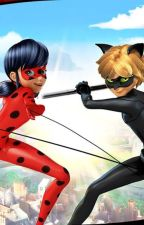 Lady bug y chat noir by SandraLizethAlvarad3