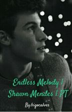 Endless Melody | Shawn Mendes | PT by bigocalves