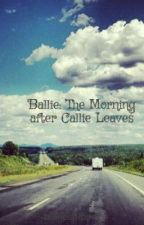 Ballie: The Morning after Callie Leaves by ballieshipper