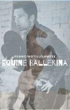 Equine Ballerina [S.S Story] by XDancingTillFlamesX