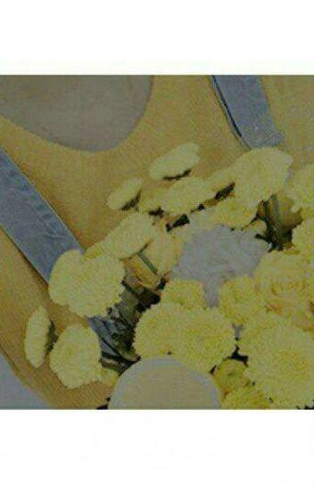Te Sere Breve:TE AMO(Golden FreddyxTN)