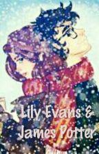 Lily Evans & James Potter by boleslawprus
