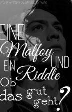 Eine Malfoy und ein Riddle ob das gut geht? by Mrsbl_Grnwld