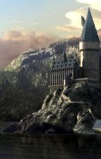 Welcher Charakter bist du in der Harry Potter Welt? by isalivre